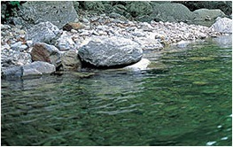 优质水源漂洗