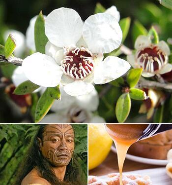 国宝级蜜种·麦卢卡