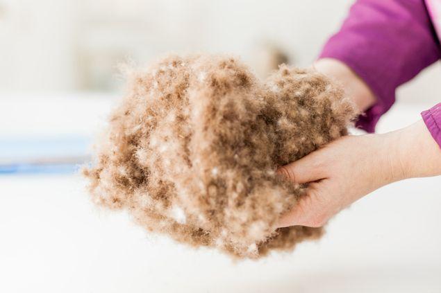 羊绒的特点1