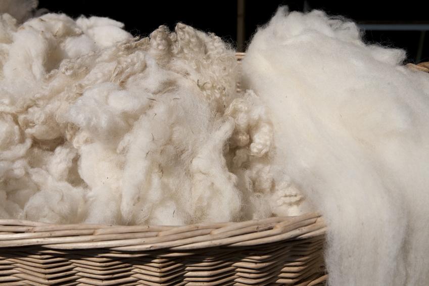 羊绒的特点2