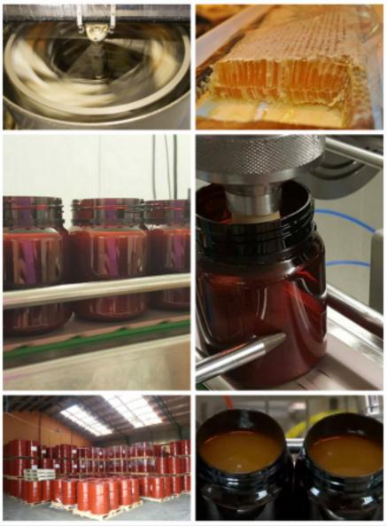 Melita蜂蜜加工生产工艺