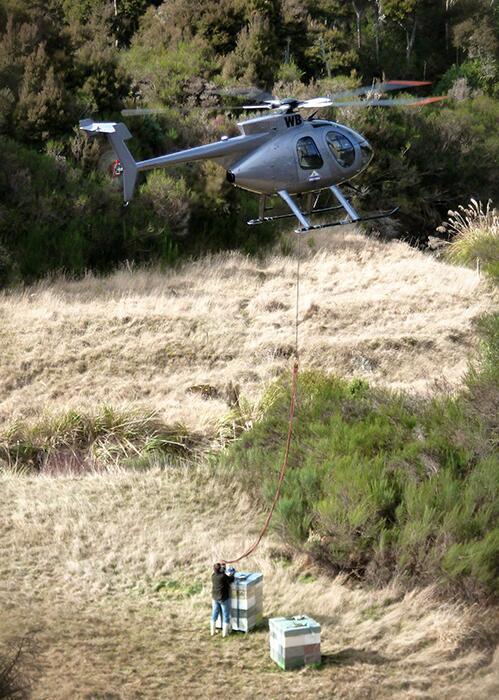 Melita蜂蜜使用直升飞机投放蜂箱