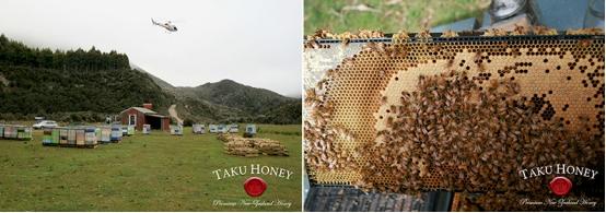 TAku蜂蜜直升机蜂箱投放