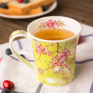 DUNOON 英国DUNOON丹侬骨瓷杯马克杯樱花/石灰绿底