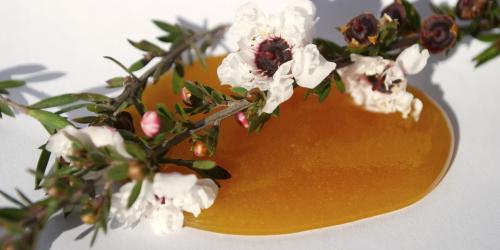 melita蜂蜜蕴含独麦素