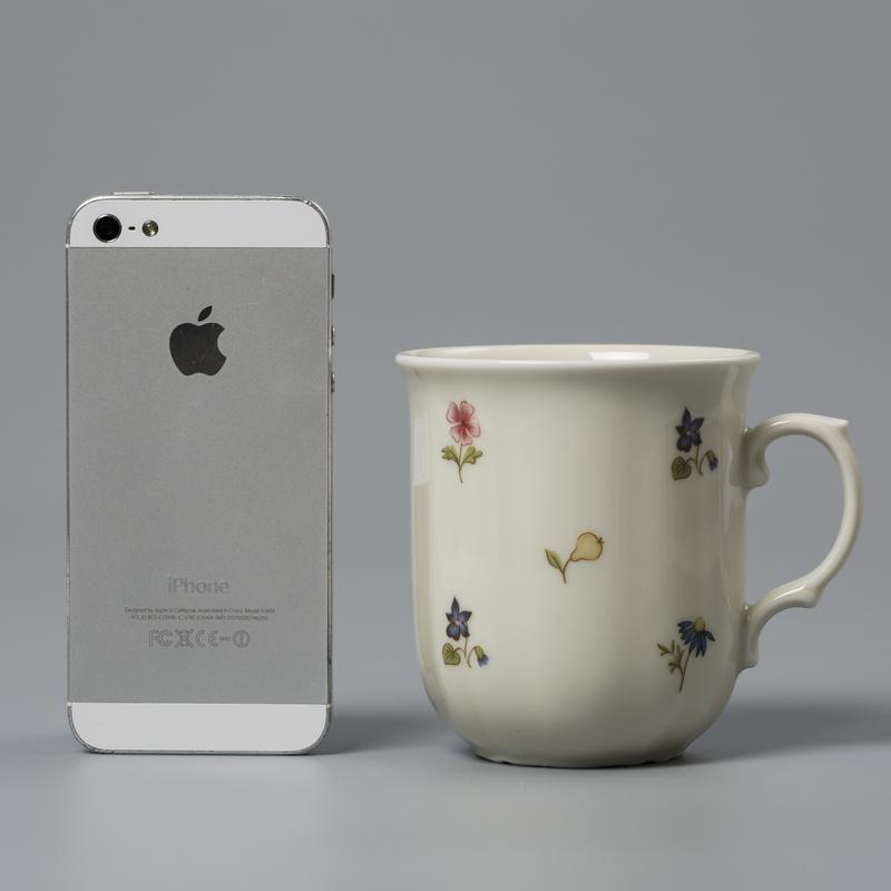Seltmann Weiden陶瓷茶杯水杯咖啡杯 德国原产彩色小花250ml
