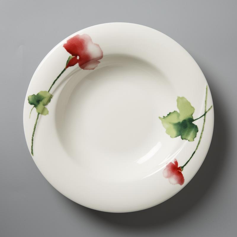 德国原产Seltmann Weiden陶瓷汤碗汤盘 绿叶红花系列23cm
