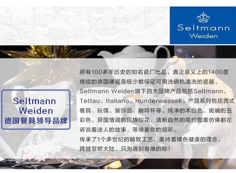 Seltmann Weiden德国餐具领导品牌-真正意义上的1400度烧结的德国硬瓷