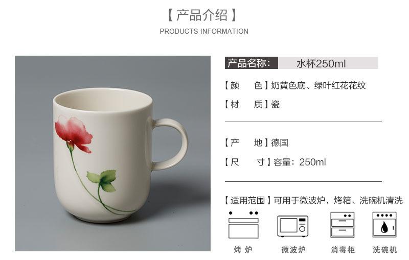 德国Seltmann Weiden陶瓷茶杯水杯绿叶红花系列产品介绍