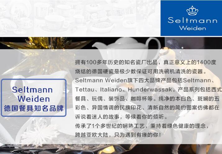 Seltmann Weiden德国餐具知名品牌