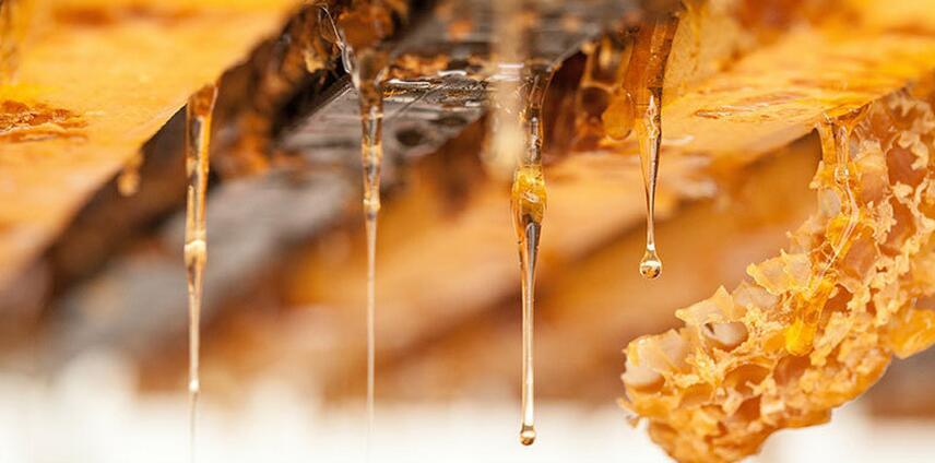 kare麦卢卡蜂蜜条状