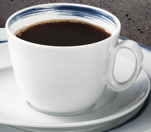 德国原产Seltmann Weiden咖啡杯 230ml瓷器餐具蓝描系列