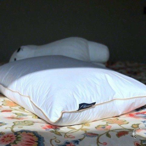 種草失眠黨幫手——OBB鵝絨枕測評