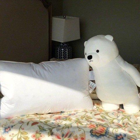 OBB鵝絨枕