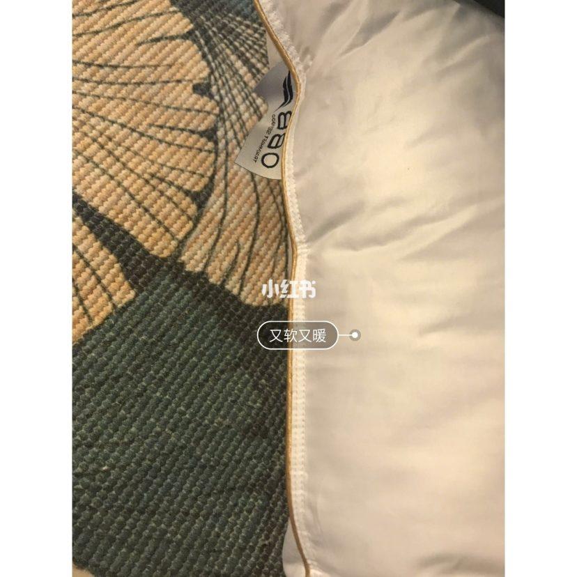 睡眠好物亲测——OBB ROYALBED鹅绒枕测评